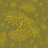 Autumn leafs background. Hand drawing vector seamless pattern with rowan and leafs. For graphic design, textile and web vector illustration