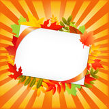 Autumn Leafs And Blank Gift Tag Stock Images