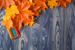 Autumn leafs on a blue wooden table. Autumn leafs and color pencils on a blue wooden table Stock Images