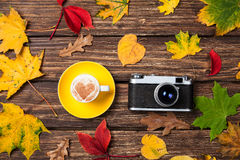 Autumn leafs, camera and cup Stock Photos