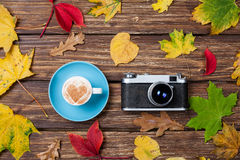 Autumn leafs, camera and cup Royalty Free Stock Photos