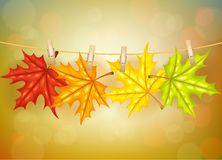 Autumn leafs with clothespins background Royalty Free Stock Photo