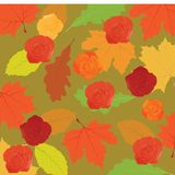 Autumn leafs. Colorful autumn leafs and roses royalty free illustration