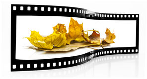 Autumn leafs film strip Stock Images