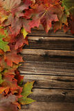 Autumn Leafs Frame Immagini Stock