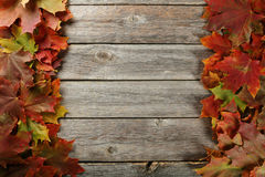 Autumn leafs frame on grey wooden background. Stock Photography