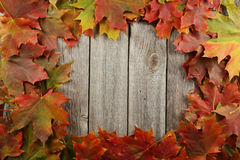 Autumn leafs frame on grey wooden background. Stock Images
