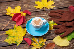 Autumn leafs, gloves and cup Stock Photos