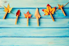Autumn leafs on a line Royalty Free Stock Photography