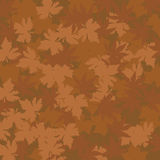 Autumn Leafs Pattern Stock Image