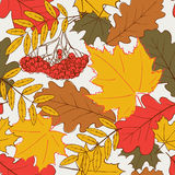 Autumn leafs pattern Royalty Free Stock Photos