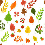 Autumn leafs pattern Stock Photo