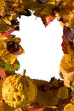 Autumn leafs and pumpkin frame Royalty Free Stock Photo