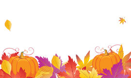 Autumn leafs and pumpkin. And white space for text. Thanksgiving Holiday banner. Vector illustration. Pumpkin vegetable and fall leaves border for Thanksgiving Royalty Free Stock Images