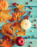 Autumn leafs and pumpkins Stock Image