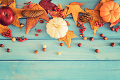 Autumn leafs and pumpkins Stock Photo