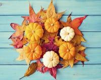 Autumn leafs and pumpkins Stock Photos