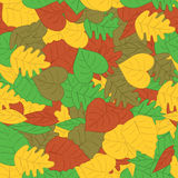 Autumn leafs seamless pattern Stock Image