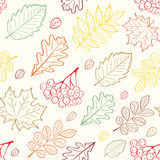 Autumn leafs seamless pattern Stock Photography