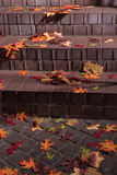 Autumn leafs on stairs outside in the sunlight Royalty Free Stock Photos