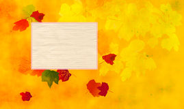 Autumn leafy background Royalty Free Stock Photography