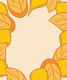 Autumn leafy frame for design Royalty Free Stock Photos
