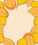 Autumn leafy frame for design royalty free stock photos