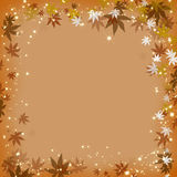 Autumn leave Royalty Free Stock Image