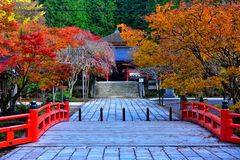 Autumn Leave at Japanese Temple, Koyasan. stock photography