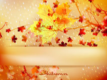 Autumn Leave Made Of Triangles. EPS 10 Stock Image