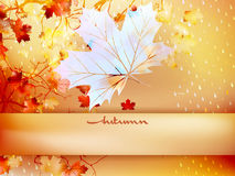 Autumn leave made of triangles. EPS 10 Stock Photos