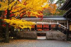 Autumn leave at Nanzenji temple, Kyoto, Japan Stock Photography