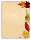 Autumn leaved bird. Illustration of sunburst background with colorful, Autumnal leaves Royalty Free Stock Photo