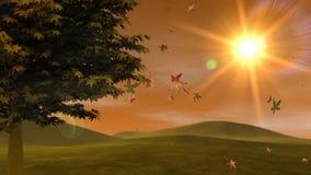 Autumn Leaves, árvore & por do sol (laço de HD) ilustração do vetor