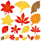 Autumn Leaves ícones de papel rasgados Foto de Stock