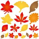 Autumn Leaves ícones de papel rasgados Foto de Stock