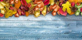 Autumn Leaves över en naturlig mörk träbakgrund arkivbild