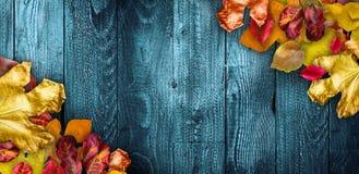 Autumn Leaves över en naturlig mörk träbakgrund Gammal smutsig trätabeller eller parkett royaltyfri foto
