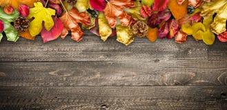 Autumn Leaves över en naturlig mörk träbakgrund Gammal smutsig trätabeller eller parkett royaltyfri fotografi