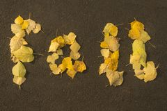 Autumn Leaves Lizenzfreie Stockfotografie