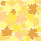 Autumn leaves. Pattern Royalty Free Stock Images