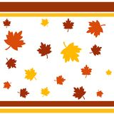 Autumn leaves. Colorful autumn leaves with border Stock Photo