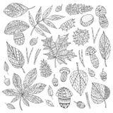 Autumn Leaves vector illustratie