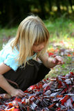 Autumn Leaves. Little girl playing with leaves Stock Photos