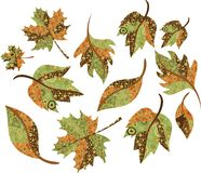 Autumn leaves stock illustration