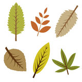 Autumn leaves. Set of six autumn leaves isolated on white background.EPS file available Royalty Free Stock Photography