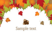 Autumn leaves. With acorn and texture stock illustration
