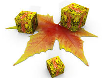Autumn leaves. The autumn leaf and cube Stock Photos