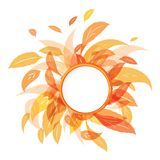 Autumn leaves. Colorful autumn leaves with text field isolated on white background. Vector illustration Royalty Free Stock Photo