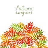 Autumn Leaves illustrazione vettoriale
